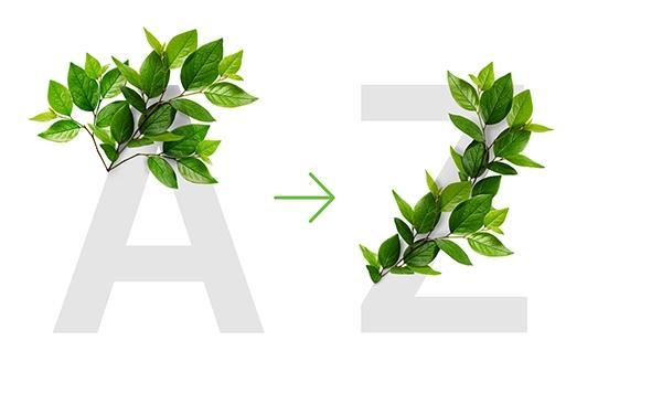 az-artwork